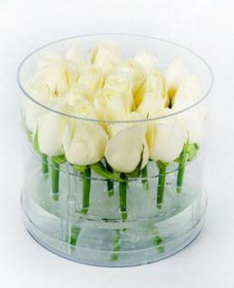 Oval Plekside Beyaz Güller