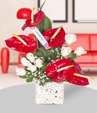 Kare camda antoryum ve  beyaz güller