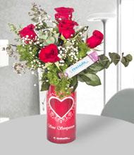 Seni seviyorum vazo 5 k�rm�z� g�l  G�l T�m T�rkiye
