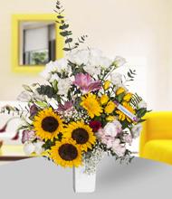 Seramik vazo içerisinde ay çiçekleri
