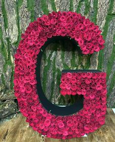 Harf Tasarım Güller
