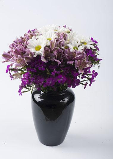 Vazoda Kýr Çiçekleri